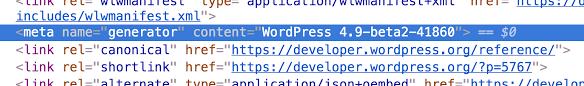 screenshot of meta generator showing wordpress version
