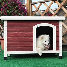 petsfit insulated wooden dog kennel with removable floor for easy cleaning red color wooden kennel pitch roof outdoor