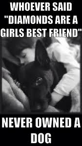 Quotes About A Girl And Her Dog Amazing Whoever Said Diamonds Are A Girls Best Friend Never Owned A Dog