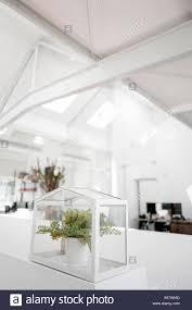 Anlage Im Glaskasten Am Geländer In Office Stockfoto Bild