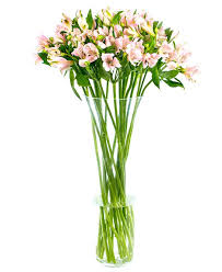 weekly flower delivery pink alstroemeria flowers delivered