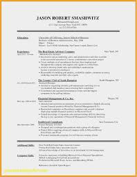 Download 54 Resume Template Microsoft Word 2010 Photo Free