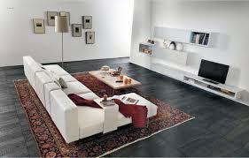 modern oriental rugs home and furniture maxempanadas uses