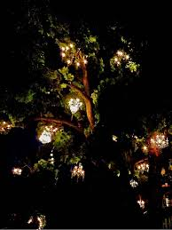 ceiling lights trough chandelier chandelier hanging from tree chandelier lamp shades where is the famous