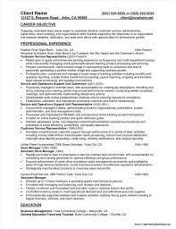 Amazing Teller Manager Resume Ideas Resume Ideas Namanasa Com