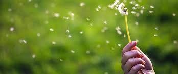 Seasonal allergy symptoms or just a cold? - The Castlight Blog
