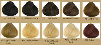 African American Hair Dye Color Chart Hair Color Chart Qlassy Hair Extensions