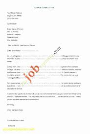 Resumes Format Beautiful Nice Excellent Resume Format Resume