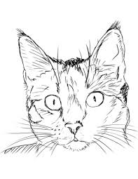 Small Picture Cat Portrait coloring page Free Printable Coloring Pages