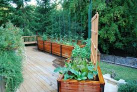 Small Picture Best Of Edible Garden Design Deck Traditional With Raised Bed