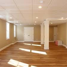 basement flooring carpet. Which Carpet Is Best For A Basement Carpeting Tips Rh Homeadvisor  Com Flooring