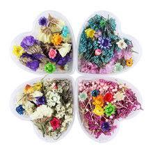 Выгодная цена на <b>Lovely</b> Flowers Pictures — суперскидки на ...