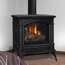 napoleon gas stove. Fine Gas GDS60IN Napoleon Direct Vent CastIron Gas Stove With