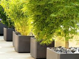 large flower pots for outdoors outdoor ideas modern garages drawings of flowers large outdoor flower pots canada