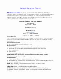 Magnificent Resume Freshers Format Images Resume Ideas