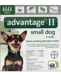imidacloprid for dogs. Delighful Dogs Flea And Tick Drops For Dogs Puppies Liquid Imidacloprid With