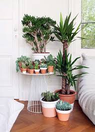 Small Picture Indoor Garden Ideas Garden ideas and garden design