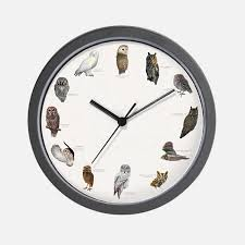 Small Picture Owl Clocks Owl Wall Clocks Large Modern Kitchen Clocks