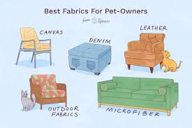 ilration of best fabrics for pet owners