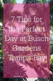 follow these tips to make the most of your busch gardens ta bay vacation pin