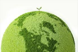 on the green revolution importance of green revolution essay on the green revolution