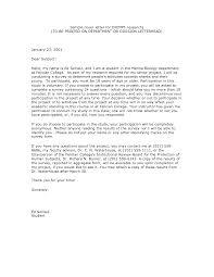 Ideas Of Resume Cv Cover Letter Sample Database Programmer In