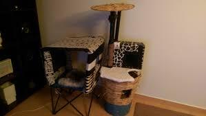 Diy cat playhouse Cardboard Cat Cat Playground With Sleep Hut Completed Product Imgur Diy Cat Playground With Sleephut Made With Household Items Album