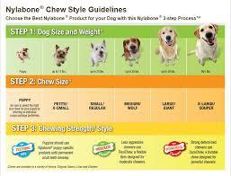 Nylabone Durachew Textured Bone Chicken Flavor Dog Toy Souper