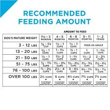 Purina Pro Plan Focus Puppy Lamb Rice Formula Dry Dog Food