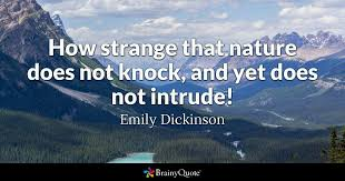 Emily Dickinson Quotes Magnificent How Strange That Nature Does Not Knock And Yet Does Not Intrude