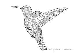 Small Picture Animals Adult Coloring Pages Coloring Pages For All Ages