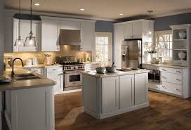 Light Gray Cabinets Kitchen Light Grey Kitchen Cabinets Choosing Cabinet Colors Gray And