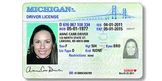 Source To Id Rep Sponsors Gender State Pride Bills Changes Aid Michigan – On Licenses Driver's