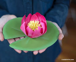 Paper Lotus Flower Craft This Pretty Paper Lotus Flower With Our Tranquil Tutorial