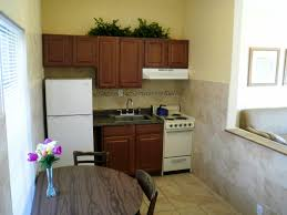 Efficiency Kitchen Kitchen Astonishing Living Shoebox Great Small Kitchen Designs