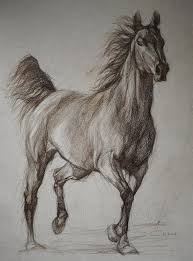 wild horse drawings in pencil. Simple Wild Wild Horse Full Silhouette Equestrian Art By PETARTPortraits 2500 Inside Drawings In Pencil D