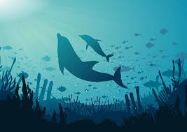 Blue Ocean Background Stock Images Page Everypixel