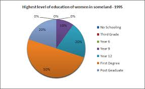 Ielts Exam Preparation Writing Task One Pie Charts