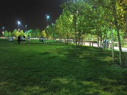 grass field at night. Field Trip Friday Brooklyn Bridge Park At Night Blog OHNY Grass H