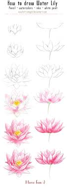 18 fill delicate water lilies with watercolor