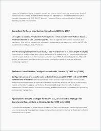Classic Resume Example Best Classic Resume Template New Executive Resume Templates Word 24