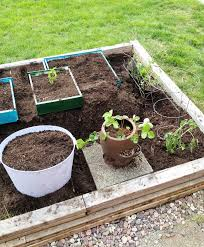 Repurposed Items Back Side Vegetable Garden Of Repurposed Drawers Bexbernard