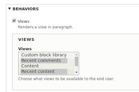 Include Views In Paragraphs With Block Field 2846296