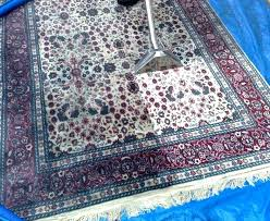cleaning wool rugs spot at home s wash rug carpet washing machine clean pet urine
