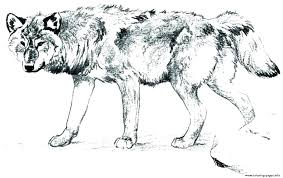 Free Wolf Coloring Pages Realistic Wolf Coloring Pages Realistic