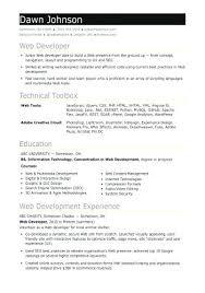 Example Of Entry Level Resume Amazing Web Resume Examples Beautiful Entry Level Resume Samples