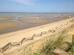 Tide Chart Skaket Beach Orleans Ma The Best Beaches For Running In New England Great Runs