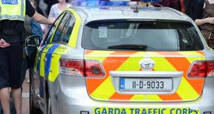 To Crash Appeal For Witnesses Gardaí Cork Fatal