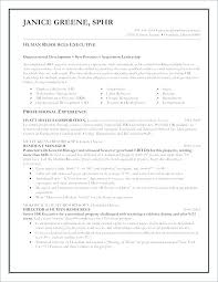 Unique Resumes Templates Resume For Executive Director Functional ...