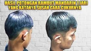 Wikihai.com gaya rambut anak pria mohawk koleksi gaya rambut. Potongan Rambut Pria Mandarin Enak